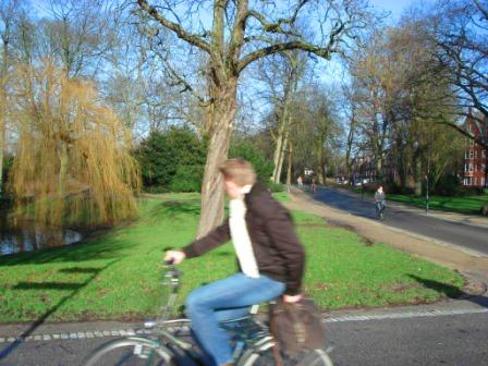 bike-only-roads-2-park