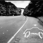bike lane dream
