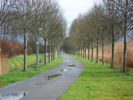 And bike roads also go way, way out into the country in Groningen, Netherlands. Image Credit: Zachary Shahan / Bikocity
