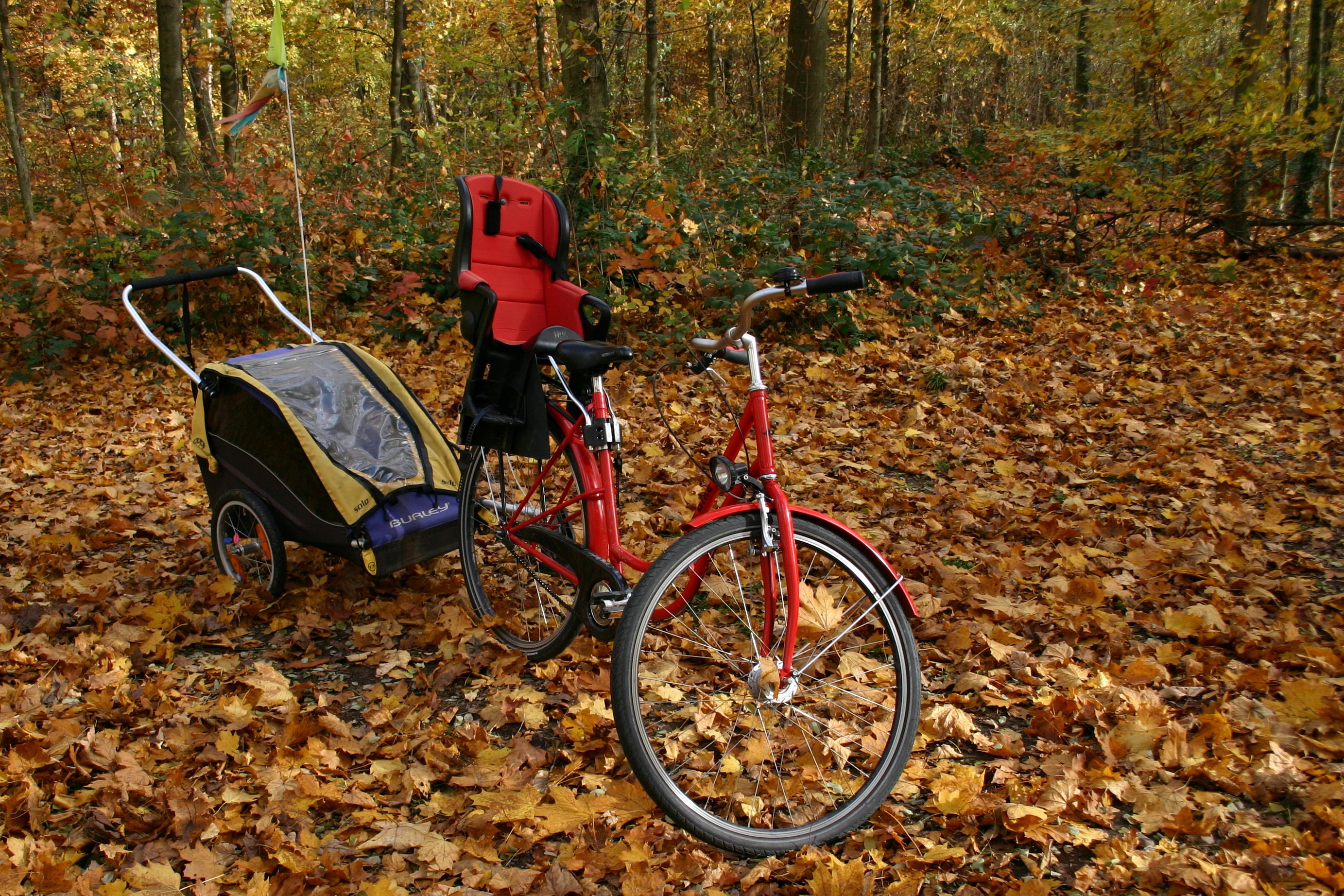 bicycle with trailer parked in leaves